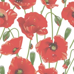 Poppies Wallpaper & Surface Covering