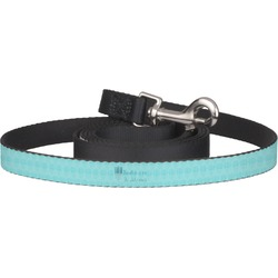Hanukkah Pet / Dog Leash (Personalized)