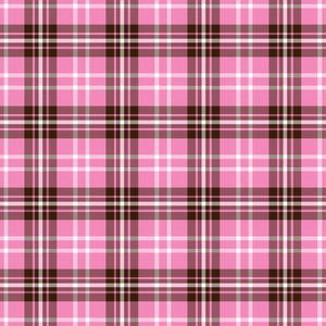Two Color Plaid Pattern