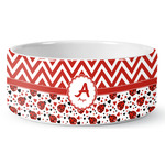 Ladybugs & Chevron Ceramic Pet Bowl (Personalized)