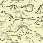 Dinosaur Skeletons Wallpaper & Surface Covering