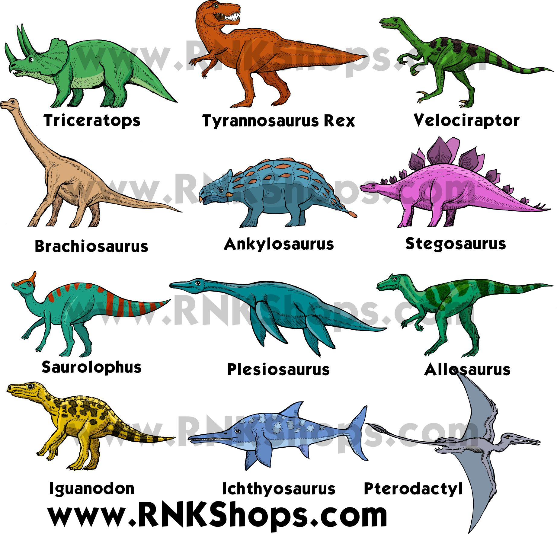 The name of the dinosaurs